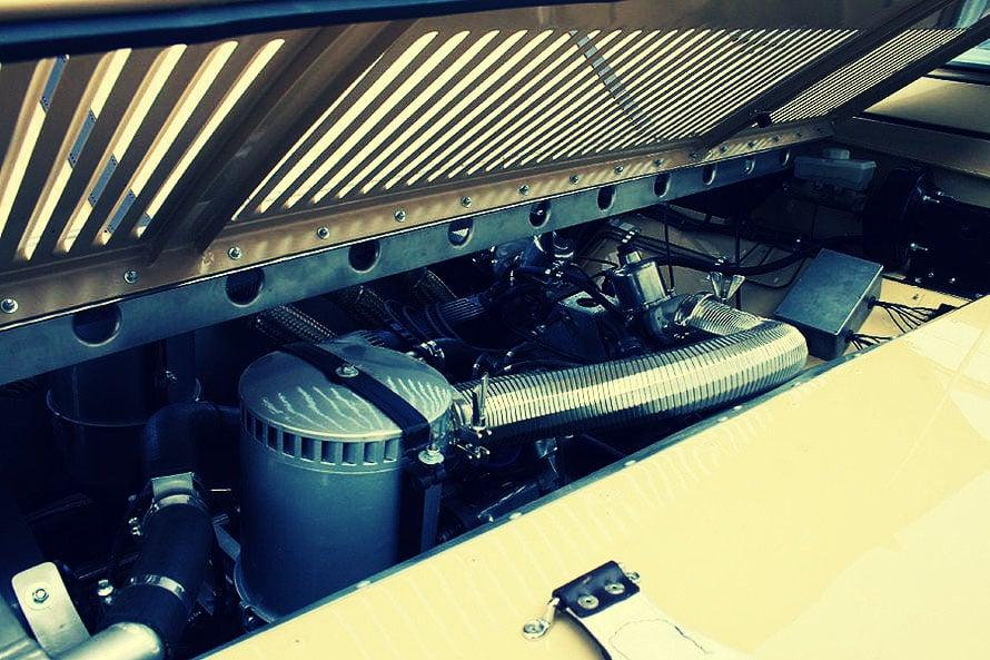 Bell-Aurens-Longnose-fotoshowImage-2135df4-258209