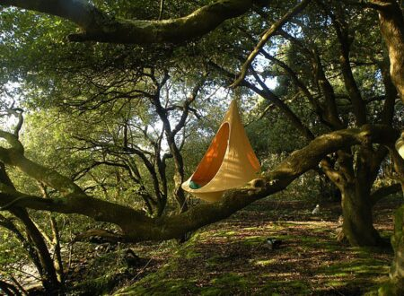 cacoon hanging 450x330 - Cacoon Hammock