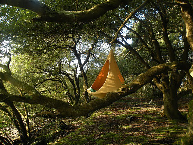 cacoon hanging Cacoon Hammock