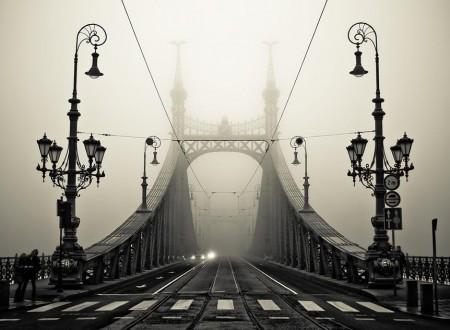 422539 272936302783862 85402240 n 450x330 - Bridge to Somewhere