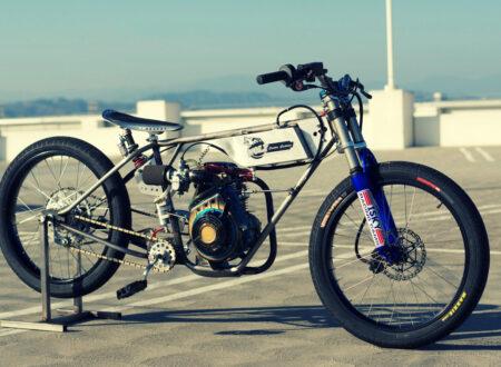 DSC07570 450x330 - Race Bike by Wolf Creative Customs