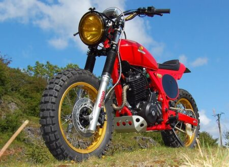 Honda Dominator NX650 Custom Tracker 5 450x330 - Honda Dominator NX650 Custom Tracker