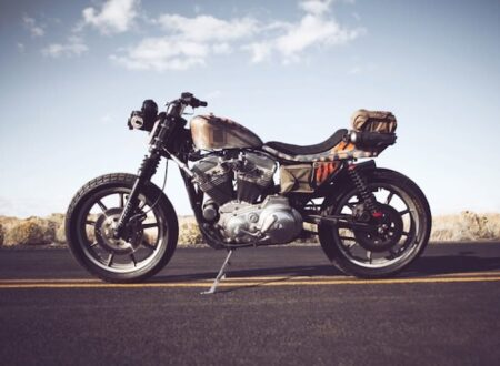 1986 harley davidson sportster custom 2 450x330 - The Roach by Icon 1000