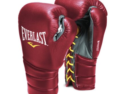 Everlast Professional Fight Boxing Gloves 450x330 - Everlast Protex 3 Professional Boxing Gloves