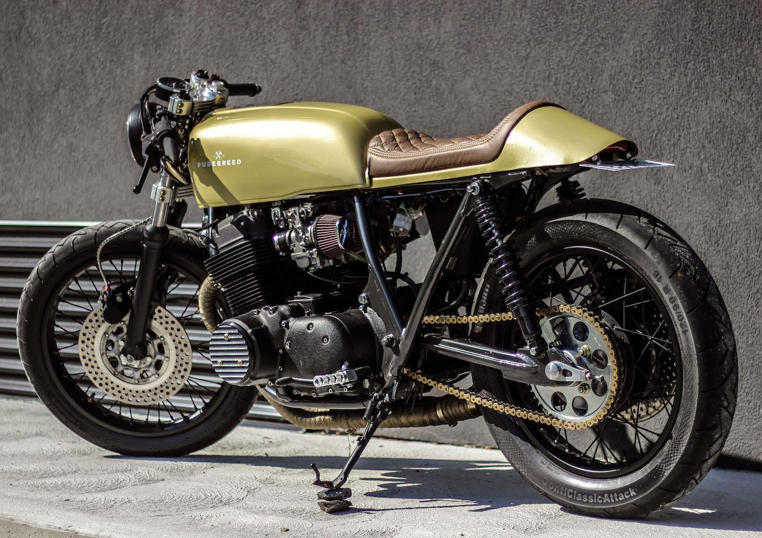 Honda Dyno New Motorcycles
