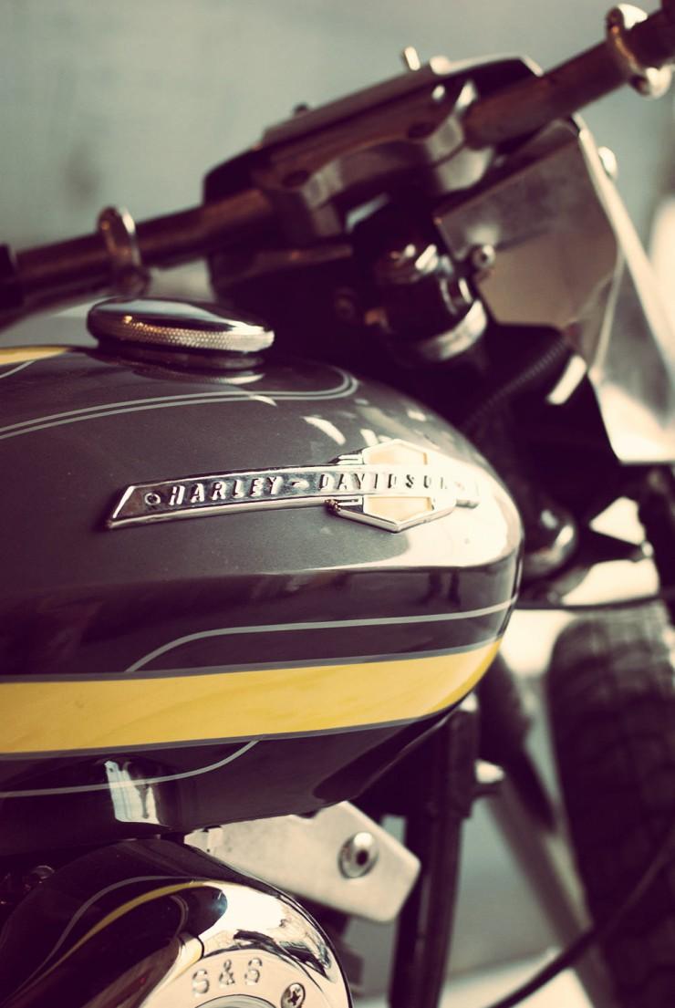 Harley Davidson Custom 13