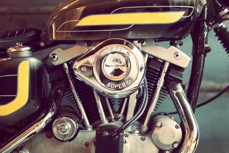 Harley Davidson Custom 15