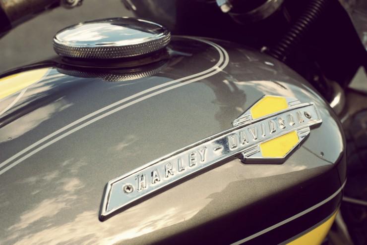Harley Davidson Custom 5