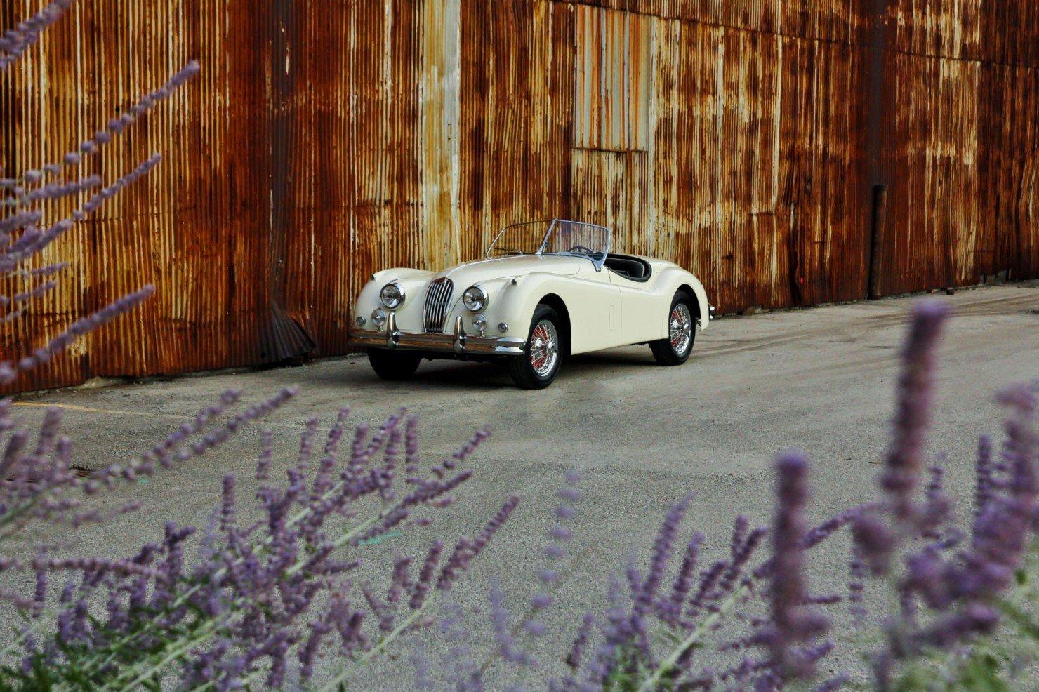 Jaguar_XK140_Car_2