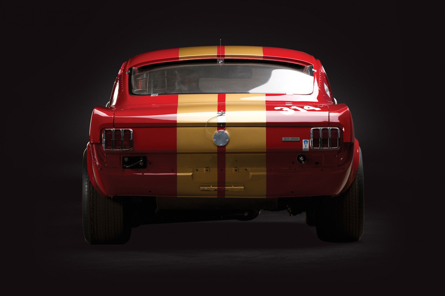 Shelby Mustang GT350 H 10
