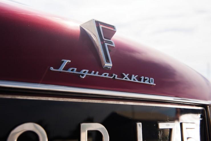 Jaguar-XK120-Car-9