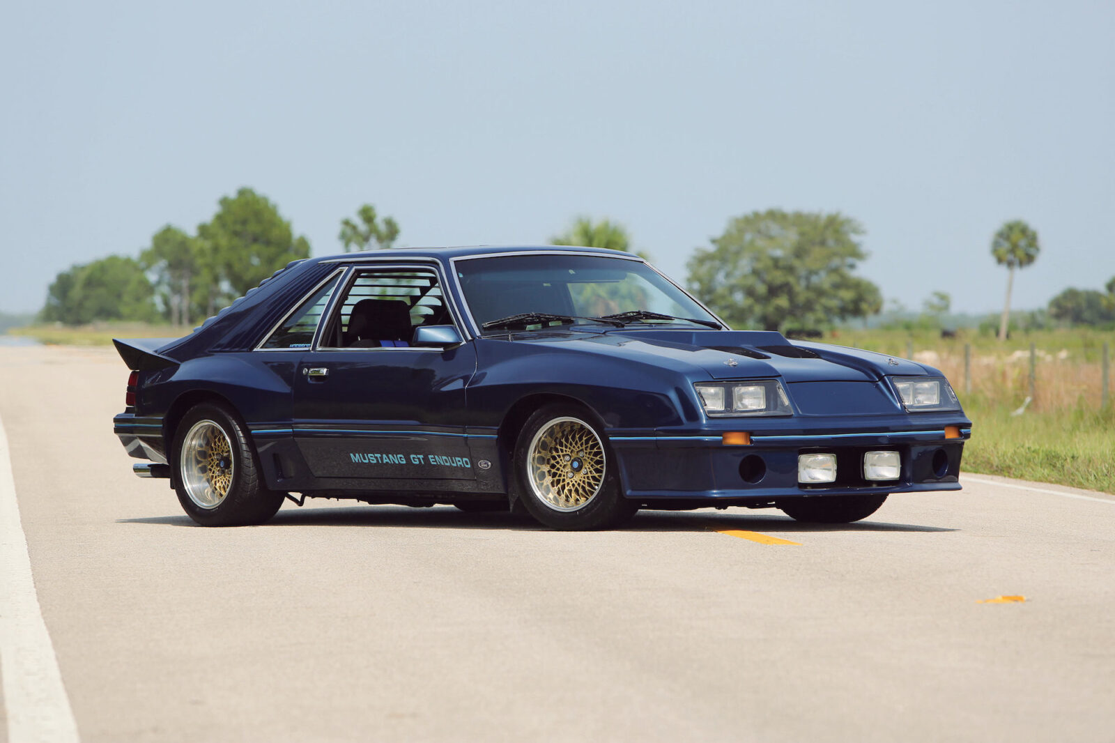 1982 ford mustang gt enduro prototype coupe rh silodrome com Mustang Rear Differential 1966 Mustang Differential