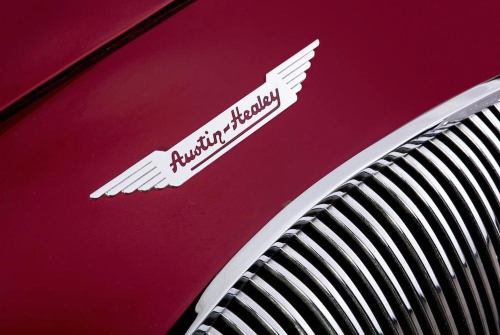 Austin-Healey-Coupe-8