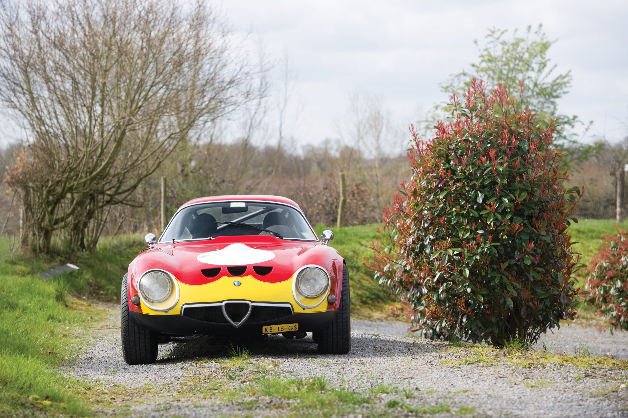 Alfa Romeo Giulia Tz Tubolare Zagato