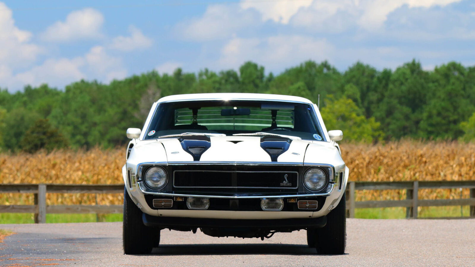 Shelby GT350 11 1600x900 - 1970 Shelby GT350 Fastback