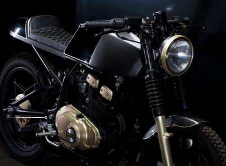 Suzuki GSX 250 2 450x330 - C-Racer Suzuki GSX250