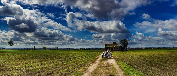 Harley Davidson: Redonda Motors Harley-Davidson Ironhead