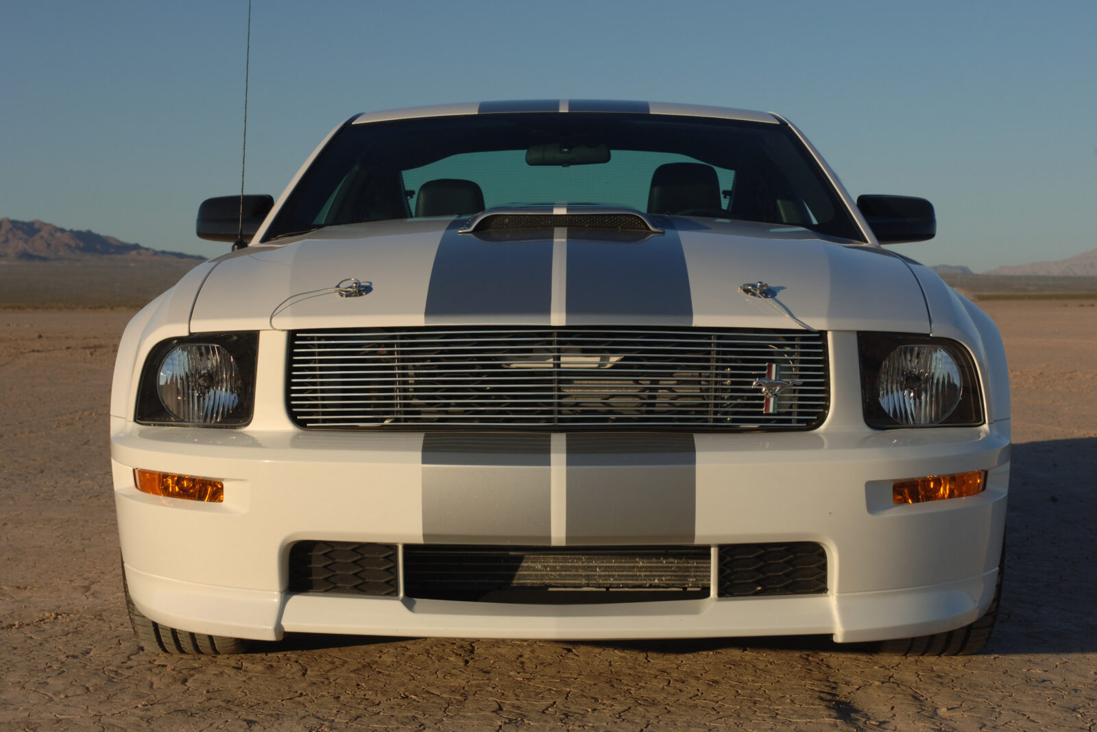 Shelby Mustang GT Concept 1 1600x1067 - 2007 Shelby Mustang GT Concept Car #1