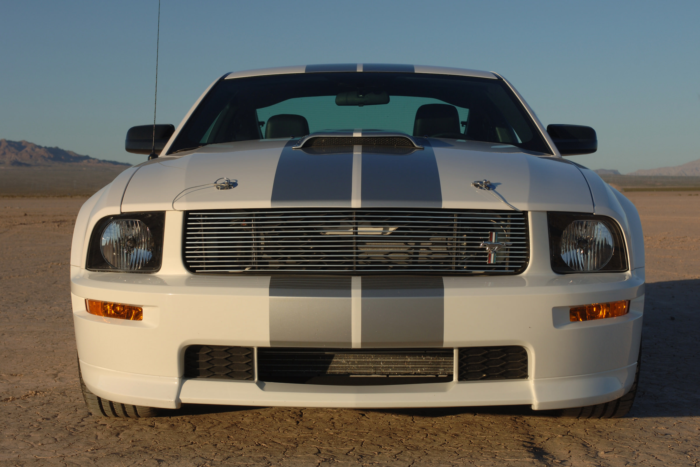 Shelby Gt H >> 2007 Shelby Mustang GT Concept Car #1