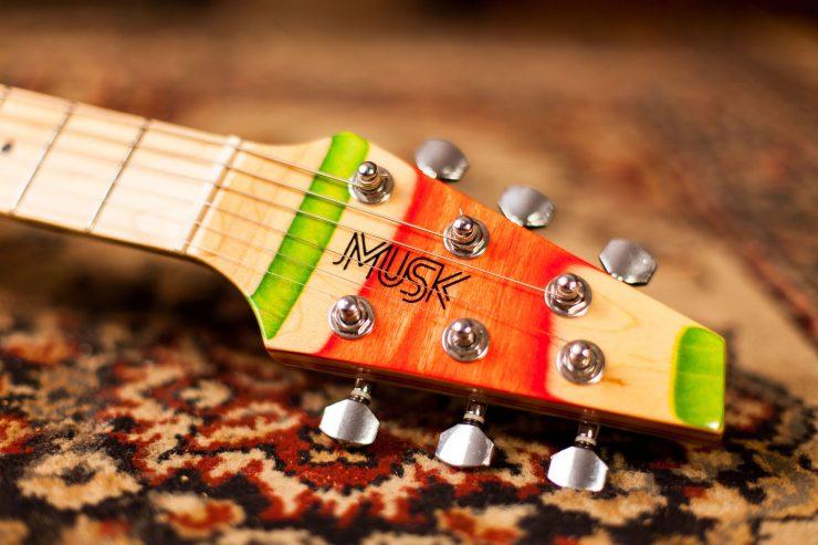 Musk Skateboard Guitars 4 1 740x493 - Musk Skateboard Guitars