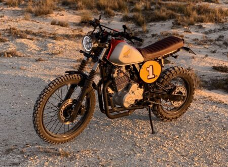 Honda Dominator NX650 Custom 1
