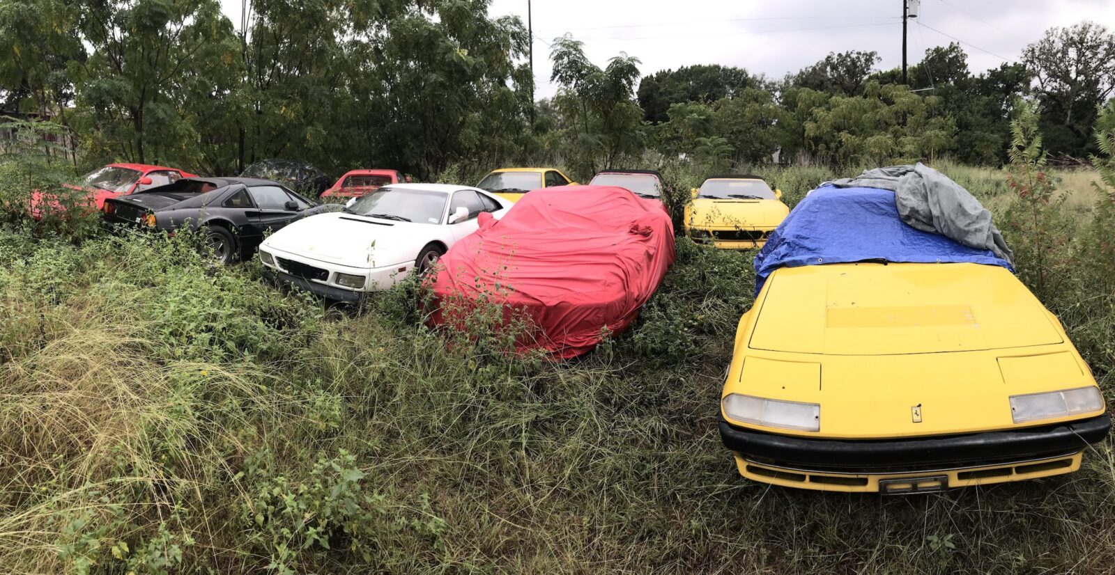 Field Of Abandoned Ferraris
