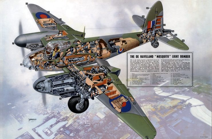 De Havilland Mosquito Cutaway Drawing