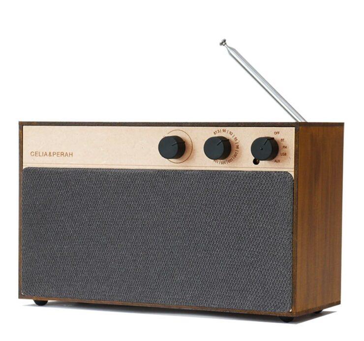Celia & Perah Kit Bluetooth DIY Speaker 2