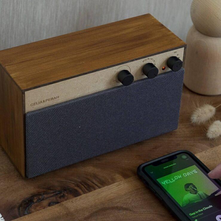 Celia & Perah Kit Bluetooth DIY Speaker 4