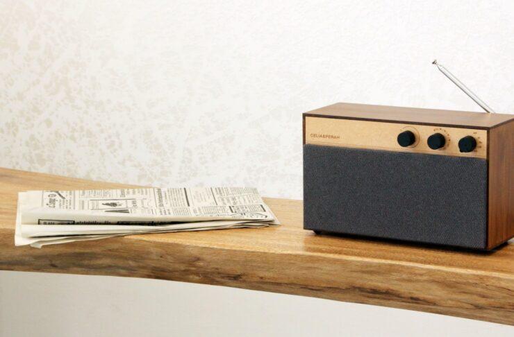 Celia & Perah Kit Bluetooth DIY Speaker 5